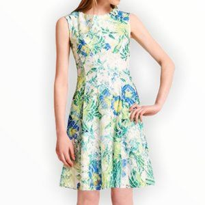 Lara Petites Lace Floral Fit and Flare Dress 4